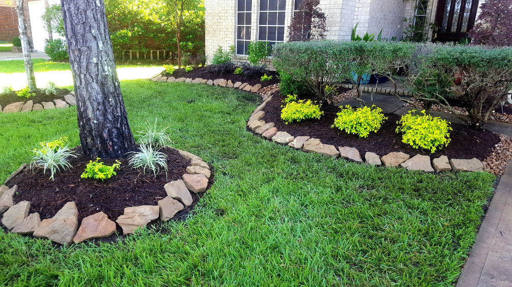 precision tree and landscaping pearland tree care and